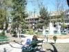Parcul Central (2)