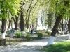 Parcul Central (4)