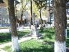 Parcul Central (6)