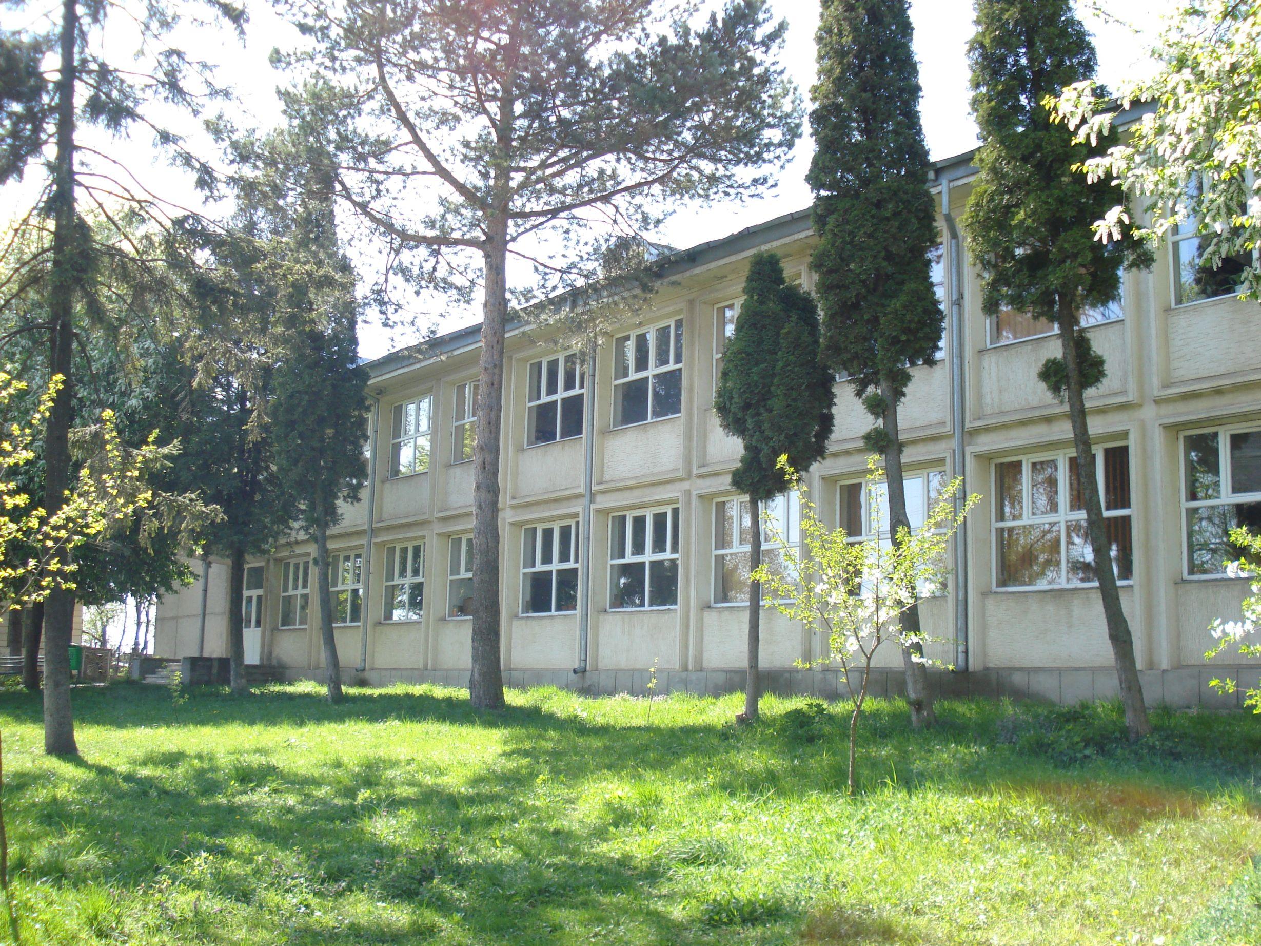 Liceul Darabani (2)